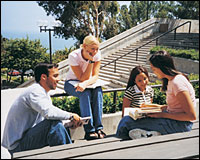 Students in a group study in the amphitheatre.