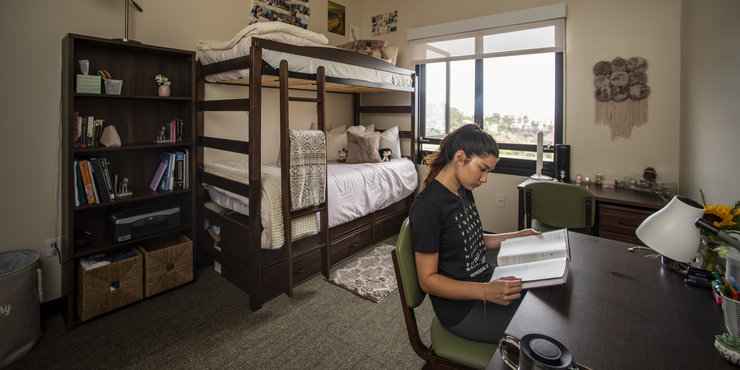 Female student pictured in her dorm room studying at her desk