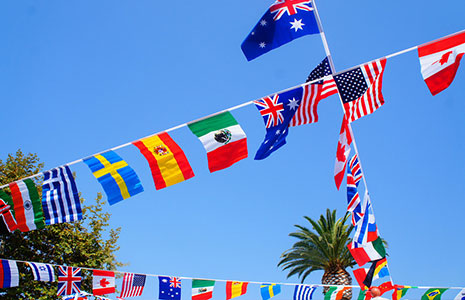 International studies and languages flags