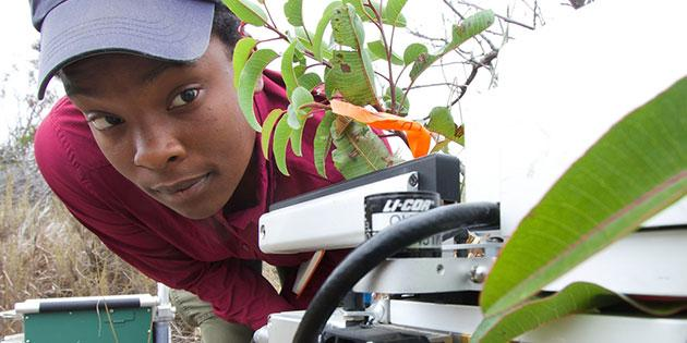 Pepperdine student studies plants in the field