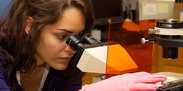Pepperdine student studies in lab