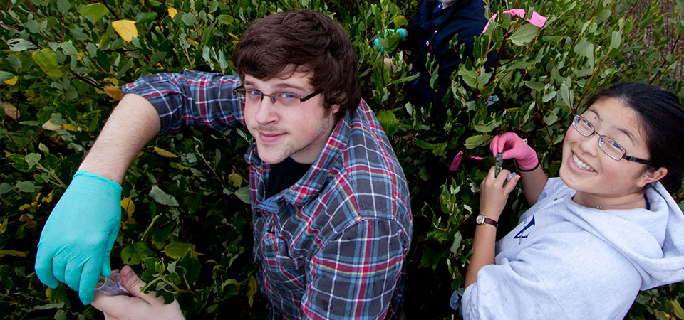 Genetics of Animal and Plant Populations: Pepperdine students in the field